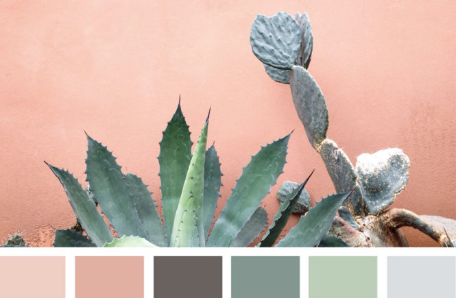 Сочетание цветов в дизайне. Психология цвета